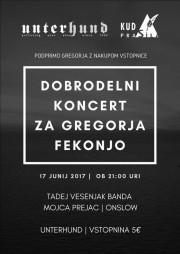 Dobrodelni_koncertGFekonja