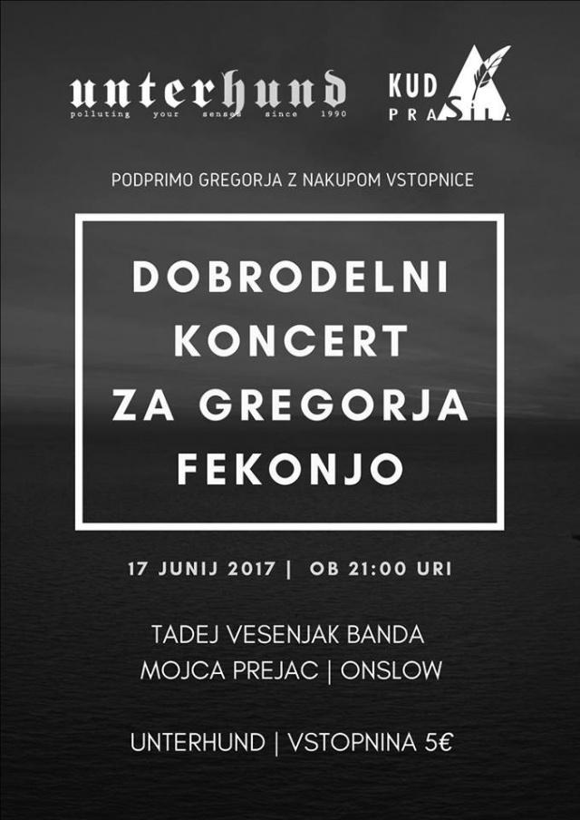 Dobrodelni koncert za Gregorja Fekonjo: Tadej Vesenjak Banda, Mojca Prejac, Onslow