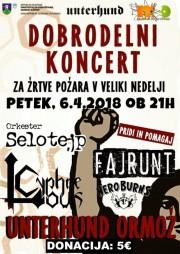 dobrodelni_koncert_2018