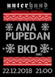 AnaPupedan_BKD-22-12-2018_Unterhund